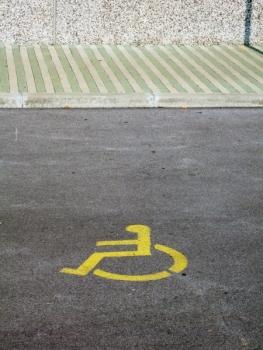 disabledpic