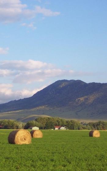 hay-stacks-jpg