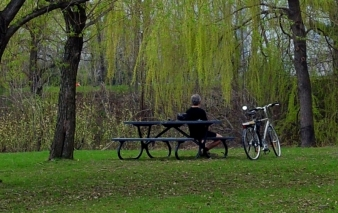 Man In The Park