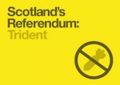 tident-referendum-picture