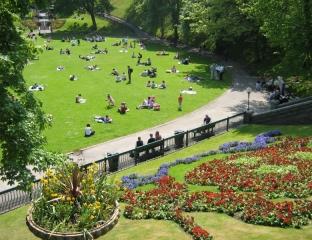 gardenspic2