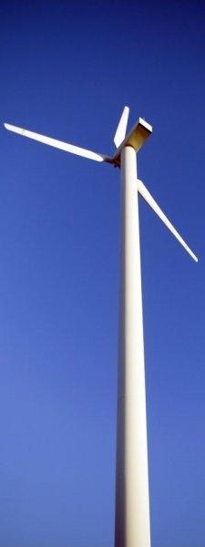 windmillbluepic_0