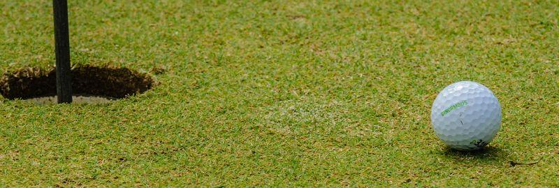 http://pixabay.com/en/golfing-golf-ball-sport-golfer-219993/