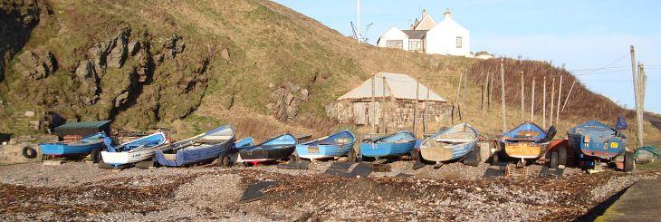 Cove boats