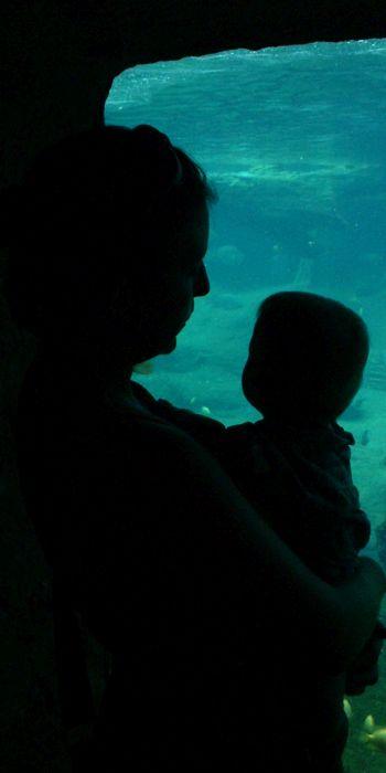 dreamstimefree_246872 mother child