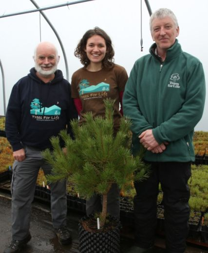 Rewilding Creates Jobs And Training At Conservation Estate