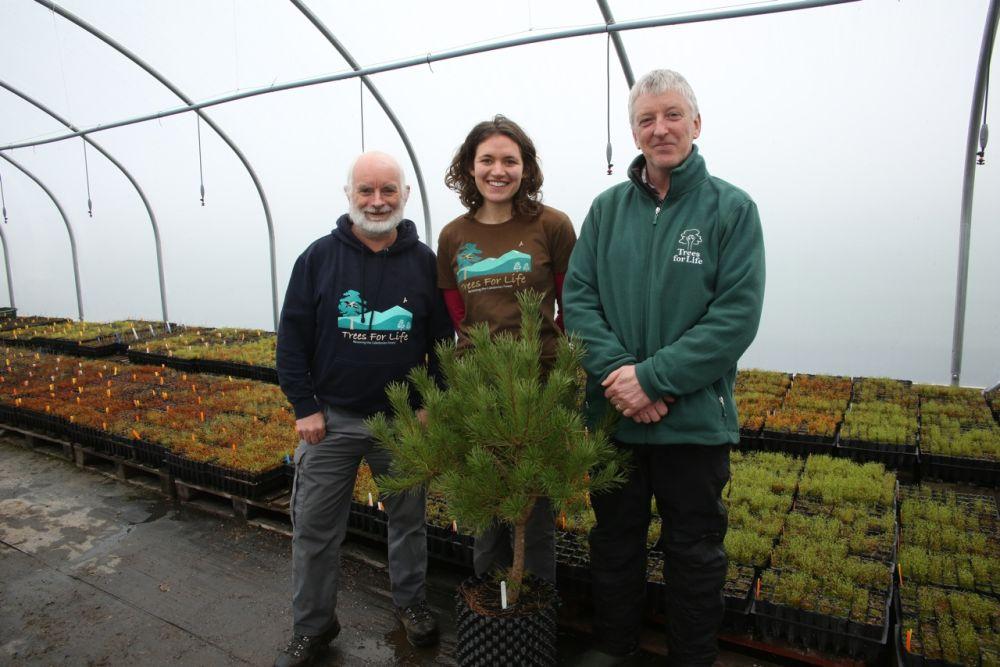Trees for Life team Native Tree Nursery