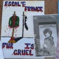 Protestors Highlight Cruelty Of City Fur Retailer