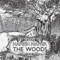 Hamish Napier's 'The Woods' - Duncan Harley Reviews