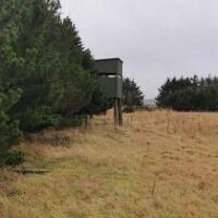 Trump Menie:  Wildlife Shot, Carcasses Dumped In Hole