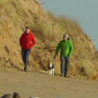 Coastal Wildlife Facing Threats From Selfie Takers